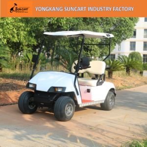 Mini Electric Golf Carts for Sale, 2 Seater Golf Carts for Sale, Electric Golf Cart 48V Battery Powered