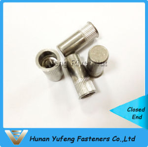 Stainless Steel Small Head Knurled Body Closed End Rivet Nut pictures & photos