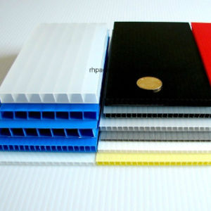 (2440X1220mm, 2000X1000mm, 2000X1250mm) Construction and Building Plastic Protection Board pictures & photos