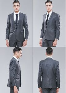 008e6e37d8b5 China Economic Hand Made Fused /Half Canvas/ Full Canvas Gray Suit ...
