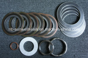 Sunwell Spiral Wound Gaskets Swg Seals Cgi 304/316L/Graphite/PTFE/Gaskets pictures & photos