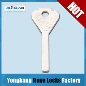 Hot Sale Brass Key with Cheap Price (JXS-56)