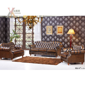 Antique Style Leather Sofa Set (SQL19)