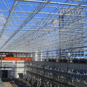 Prefabricated Steel Structure Building (wz-456)