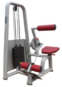 Fitness Equipment / Gym Equipment / Back Extension (SM17)