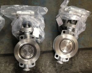 Stainless Steel 304 Wafer Type Butterfly Valve with Metal Seal D373f-16p pictures & photos