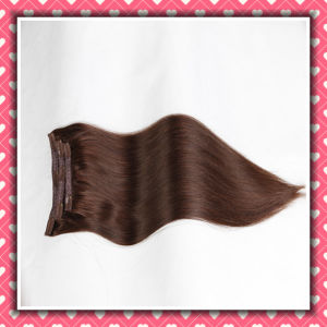 Brown Color Remy Human Hair Clip-in Extensions Silky 20inches pictures & photos