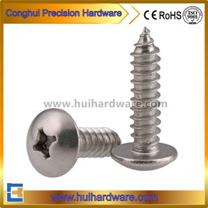 Stainless Steel 304 Modified Truss/Round Head Phillip Drive Self Tapping Screws pictures & photos