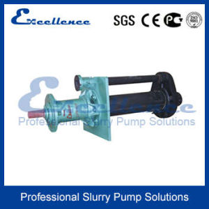 Vertical Ore Processing Mining Slurry Pump (EVR-40P) pictures & photos