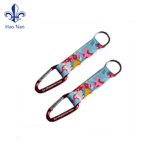 Promotional Gifts Custom Cheap Aluminum Climbing Carabiner for Wholesale pictures & photos