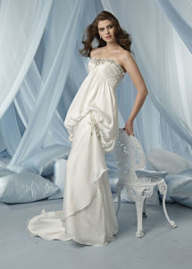 Wedding Dresses/ Evening Dresses/ Bridal Dress (DNW1005)