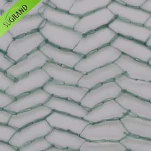 New Dark Green All Tape Anti Bird Net pictures & photos