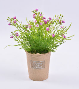 Vivid Faux Gypsophila in Paper Pot with Label for Decoration & Gifts
