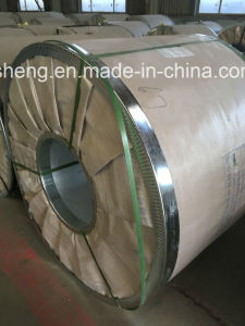 Gi / Gl / PPGI / PPGL) Galvanized, Galvalume and Prepainted Steel Coil