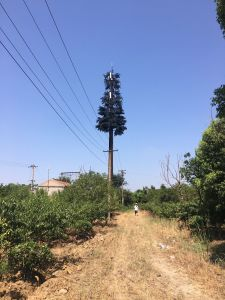Bionic Tree Tower pictures & photos