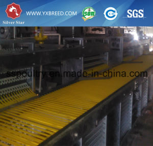 H Type Automatic Poultry Egg Chicken Cages Equipment for Chicken Farm pictures & photos