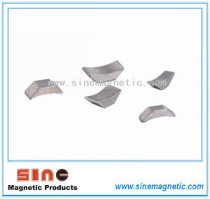 Hot Sale Rare Earth Irregular NdFeB Magnet Permanent NdFeB Magnet pictures & photos