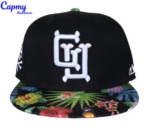 Custom Brim Printing Design Snapback Cap with 3D Embrodiery Logo