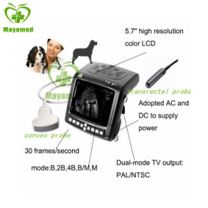 My-A018 Portable Veterinary Palmsize Ultrasound pictures & photos