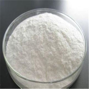 Chinese Factory Supply Industrial Grade Sodium Alginate with High Quality