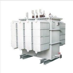 Factory Price of Special Transformer & Power Transformer & Oil Immersed Transformer. pictures & photos