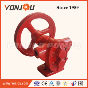 Belt Pulley Gear Oil Pump (BP) pictures & photos