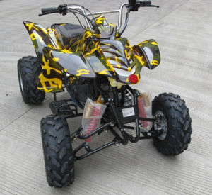 150cc GY6 Engine Multicolor ATV (SBP-ATV150B)