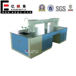 School Science Lab Design, Laboratory Work Benches, School Lab Furniture pictures & photos