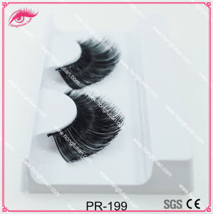 Beauty Fake Lashes Human Hiar Eyelashes with Private Label Package pictures & photos