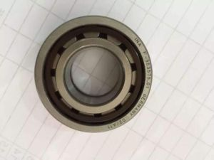 F-553575.01 Printing Machine Cylindrical Roller Bearing