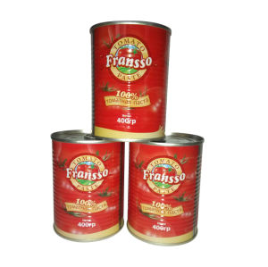 Good Quality Canned Tomato Paste 18/20% 22/24% 28/30%