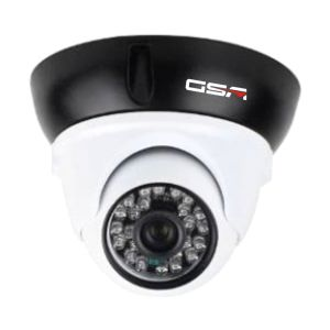 Black and White Vandalproof Dome Camera-Dr20