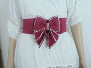 Fashion Lady Accessory Belt (JBJEE-004)