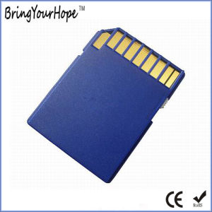 256MB SD Memory Card (256MB SD) pictures & photos