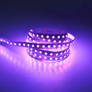 5050 60LEDs 24V RGBW LED Strip pictures & photos
