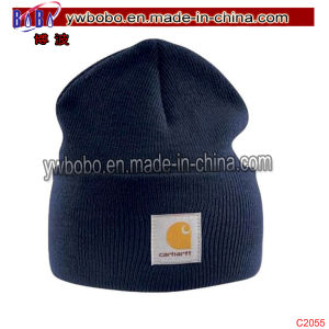 Acrylic Watch Cap Port Mens Branded Winter Hat Beanie Headwear (C2055) pictures & photos