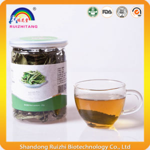 Sweetleaf Stevia Leaf Tea for Health Protection pictures & photos