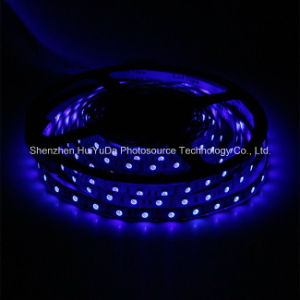 High Brightness Blue Color IP20 SMD5050 Chip 30LEDs 7.2W DC24V LED Strip pictures & photos
