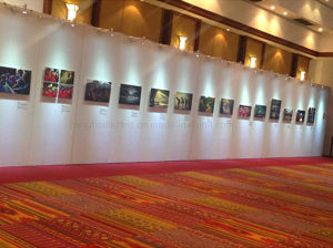 Wholesale Exhibitions