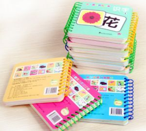 Full Color Yo Book Printing, Cmyk Full Color Wire-O Notebook Printing