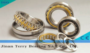 The Low Noice Cylindrical Roller Bearing (NJ309E)