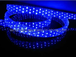China led rope light flat 3 wires srfl 3w china led rope light led rope light flat 3 wires srfl 3w aloadofball Images