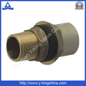 High Quality Male Connector Coupling Brass Fitting (YD-6021) pictures & photos