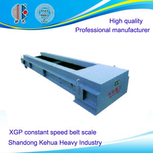 Xgp Constant Speed Belt Scale for Powder or Granular Material Measurement