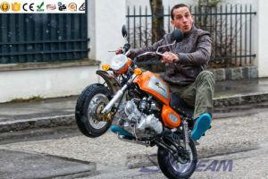 Skyteam Classic Motorcycle Monkey Bike Dax Mini Bike 50cc 125cc EEC Euro4  Efi