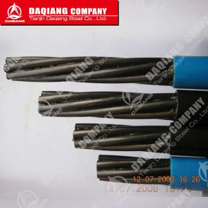PE Coated Steel Strand for Building pictures & photos