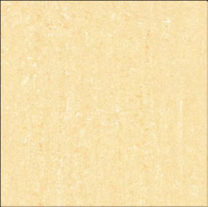 Double Loading Porcelain Tile 600x600 (E6902)