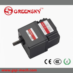 GS 12/24V 15W 60mm Brushless DC Gear Motor for Car Using pictures & photos