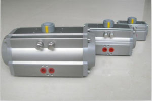 Rack&Pinion at Series Pneumatic Actuator pictures & photos
