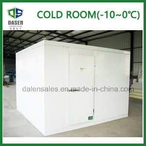 OEM Design Freezer for Seafood (400rt) pictures & photos